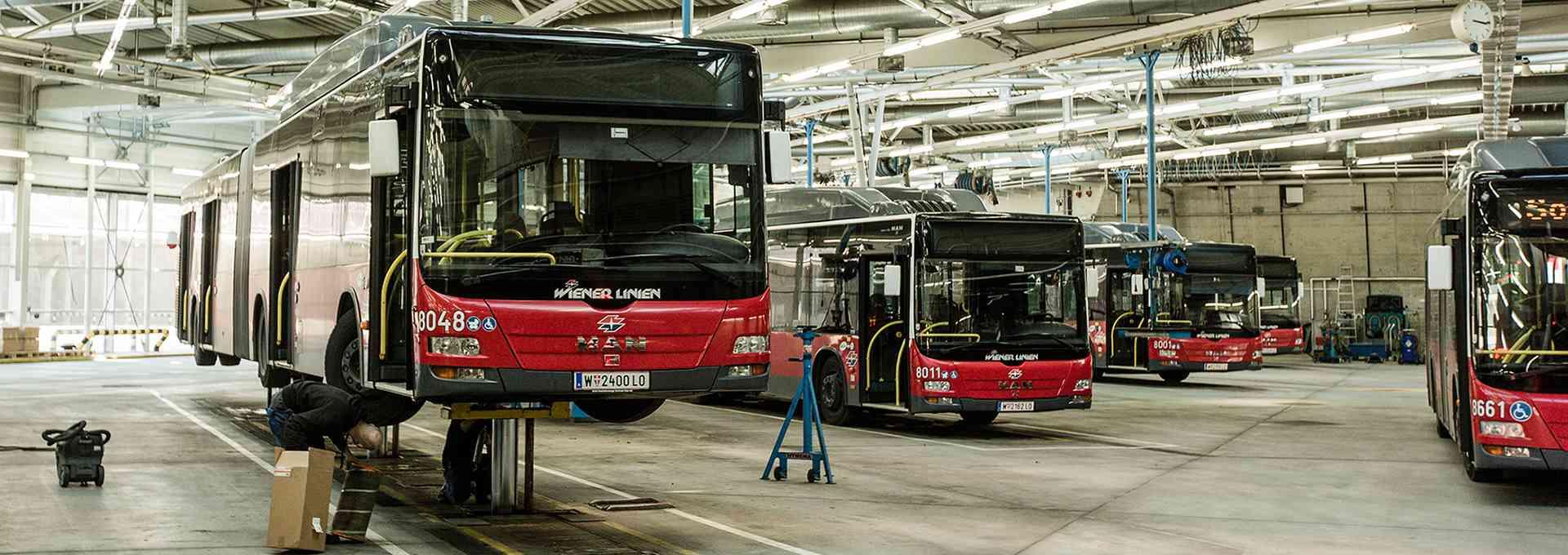 In der Autobusgarage werden die Busse gründlich gereinigt.
