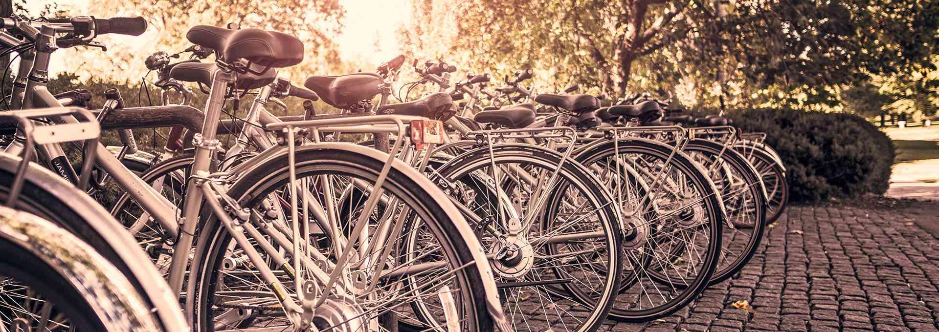 Mit dem Fahrrad in der U Bahn Wiener Linien Unternehmensblog