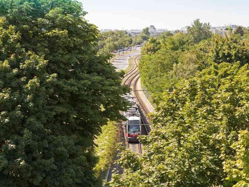 Die Linie 31 fährt direkt nach Stammersdorf.