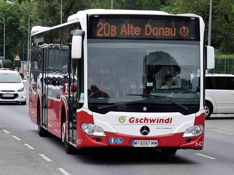 Der Bäderbus fährt über die Arbeiterstrandbadstraße entlang der Alten Donau. Foto: Richard Walde