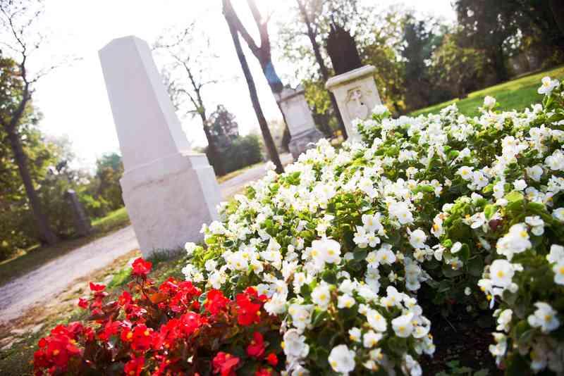 Während Teile des Friedhofspark verwildert aussehen, gibt es auch einige schön gepflegte Ruhestätten.
