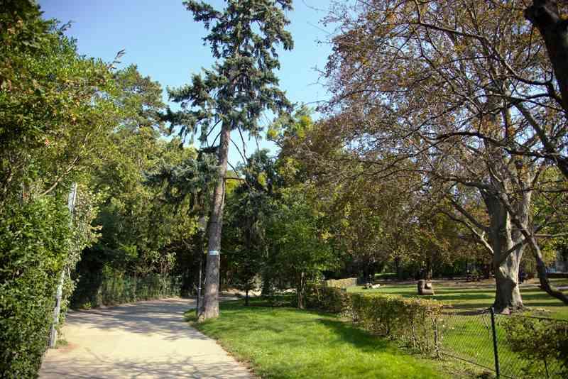 Der Türkenschanzpark ist auch im Herbst ein schönes Ausflugsziel.