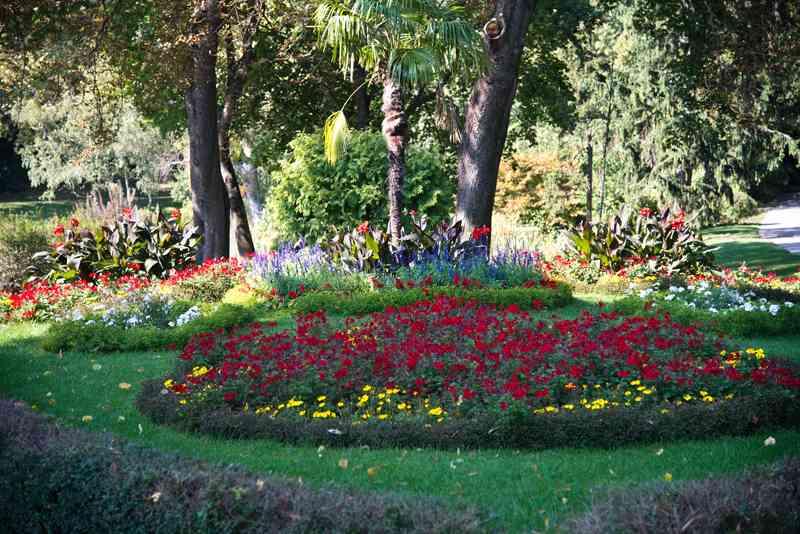 Im Türkenschanzpark gibt es viele seltene Blumenarten zu bestaunen.