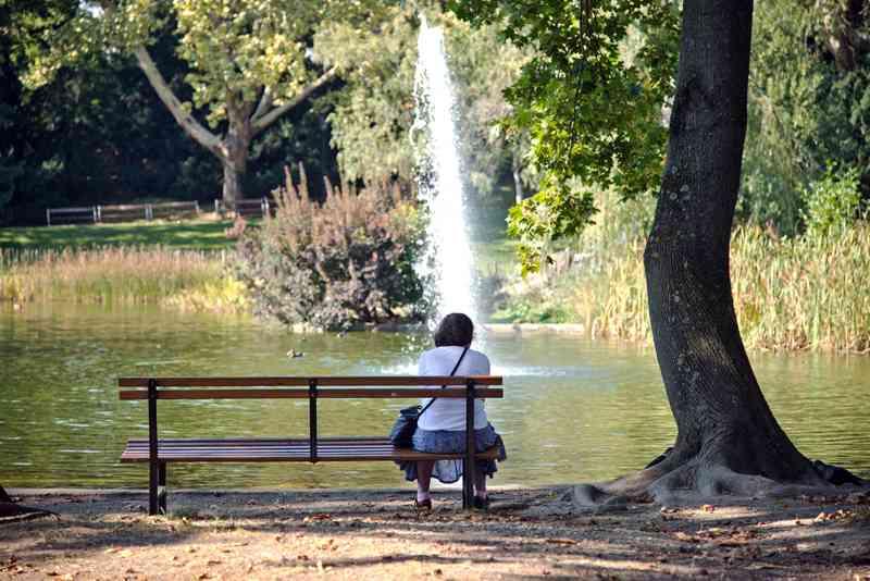 Die Teiche und Springbrunnen zählen zu den Attraktionen im Türkenschanzpark.