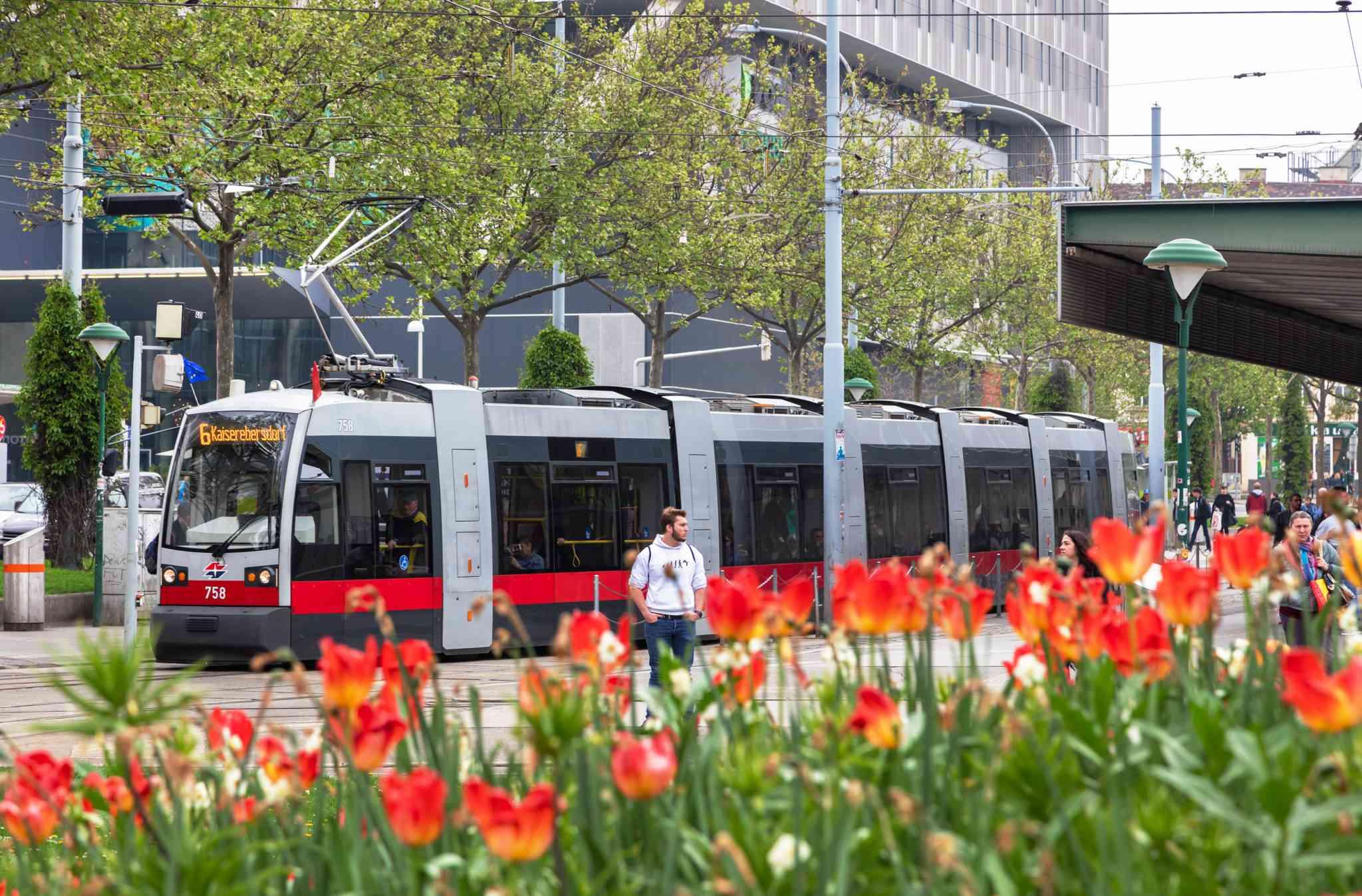 Die Linie 6 ist als längste Bim mit den meisten Triebwägen und dem höchsten Fahrgastaufkommen unsere Rekord-Straßenbahn.