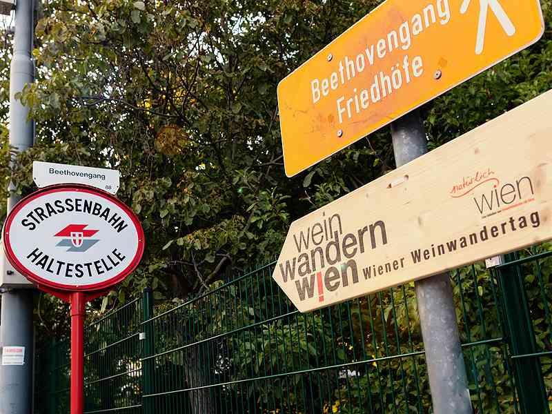Bei der Endstation Nußdorf beginnt der Wanderweg Beethovengang.