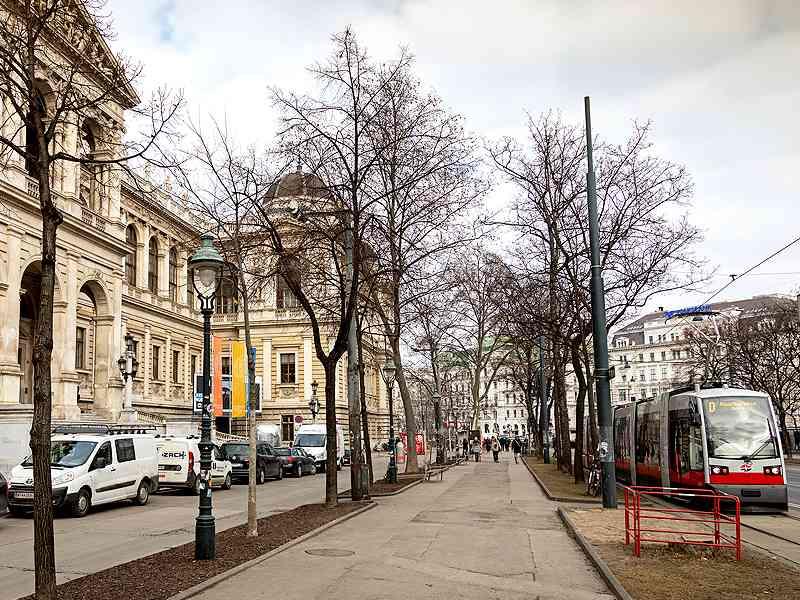 Die Hauptuniversität Wien ist auch eine der Haltestellen des D-Wagens.