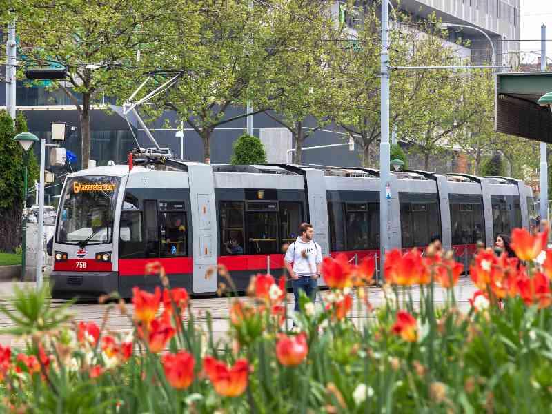 Fakt: Die Linie 6 ist die Straßenbahn mit der längsten Strecke.